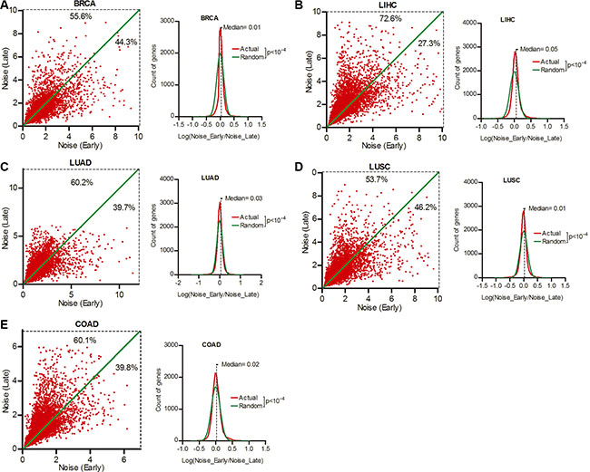 Smaller gene expression noise was associated with better patient prognosis.