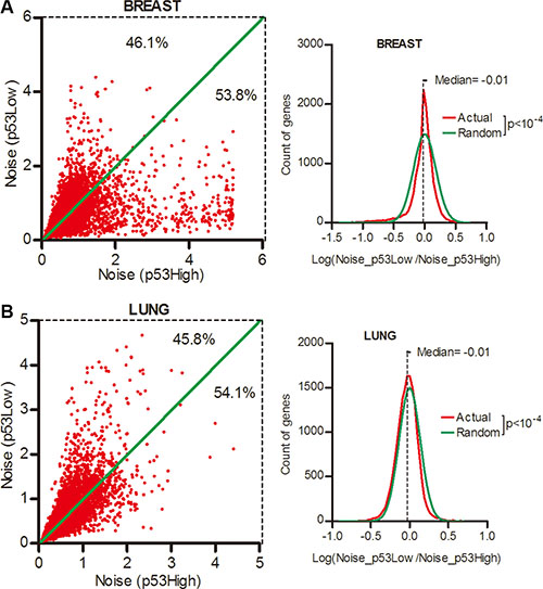 Gene expression noise was positively correlated with p53 activity in normal tissues.