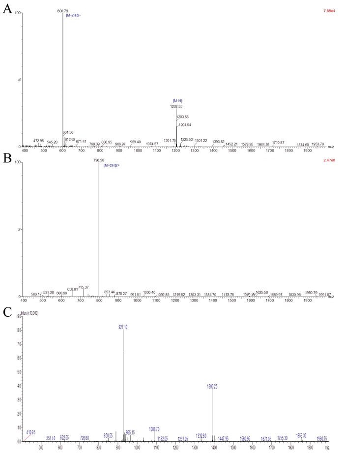 Analysis of purified HSP70-P/AFP-P by LC-MS.