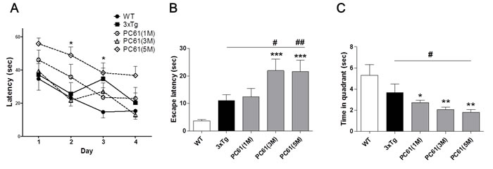 Depletion of Tregs accelerates spatial learning deficits in 3xTg-AD mice.