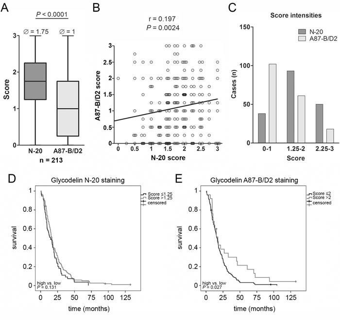 Analyses of a MPM tissue microarray (TMA).