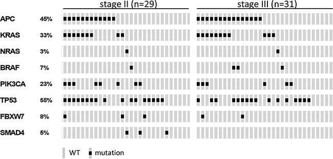 Oncotarget | Genomic profiling of stage II and III colon cancers