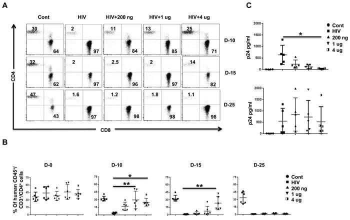 IFN-α2 (pegasys) treatment delays HIV disease progression in Hu-PBL mice.