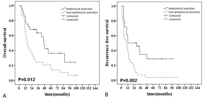 Long-term survival curves after anatomical (