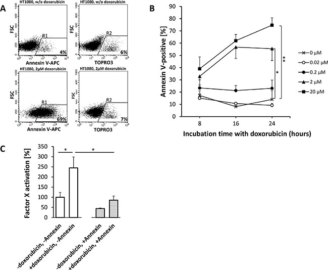 Doxorubicin-induced phosphatidylserine (PS) expression on HT1080 fibrosarcoma cells enhances the procoagulatory activity of tTF-NGR.
