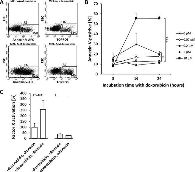 Doxorubicin-induced phosphatidylserine (PS) expression on M21-melanoma cells enhances the procoagulatory activity of tTF-NGR.
