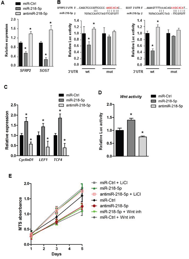 miR-218-5p directly targets Wnt inhibitors to augment Wnt signaling.