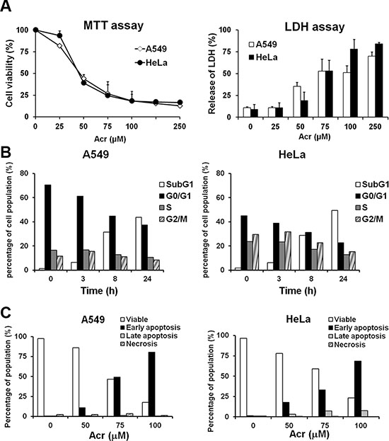 Acrolein induces the same cytotoxic effect in A549 and HeLa cells.