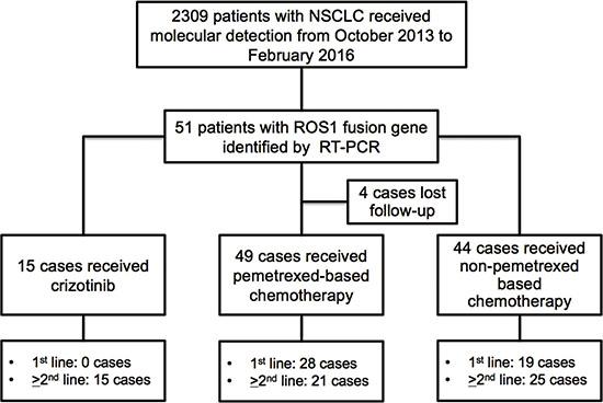 Oncotarget | Efficacy of crizotinib and pemetrexed-based