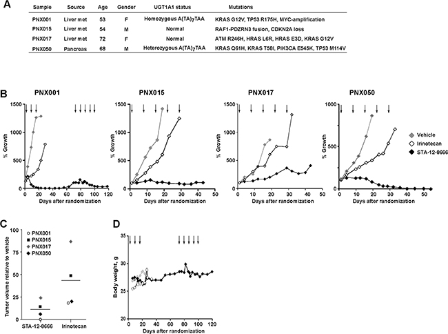Efficacy of STA-12-8666 against patient-derived pancreatic adenocarcinoma xenografts.