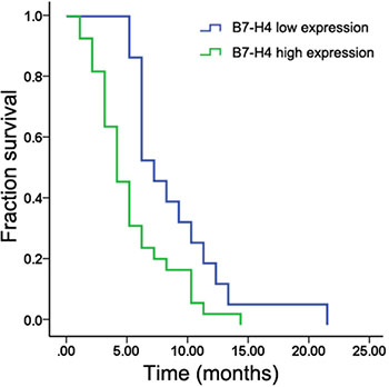 Kaplan–Meier analysis showing that patients with liver metastases with high B7-H4 expression had shorter survival than those with low expression (p < 0.05).