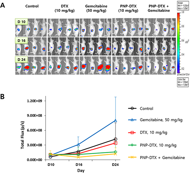 Preclinical efficacy of PNP-DTX in orthotopic mouse model.