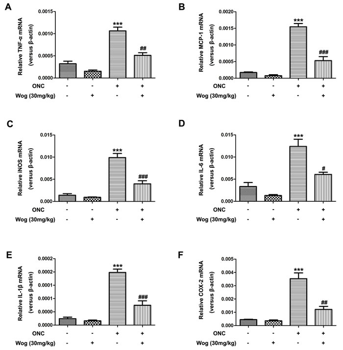 The effect of wogonin on the release of pro-inflammatory cytokines in the retina after ONC.