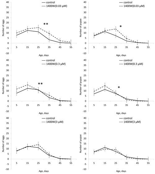Effect of 1400W (0.3 µМ) on locomotor activity Drosophila melanogaster.