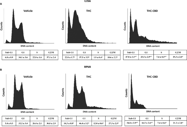 THC alone and THC-CBD combination increase the sub-G1 phase in U266 and RPMI cell lines.