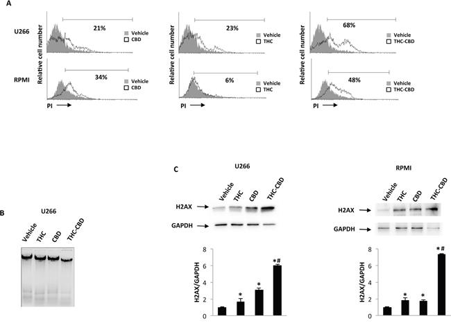 CBD-THC combination induces necrosis.