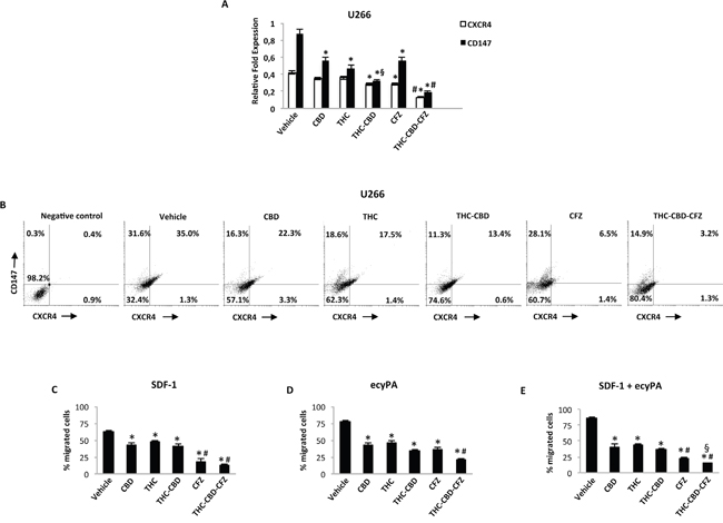 THC, CBD and CFZ inhibit cell migration in U266 cell line.
