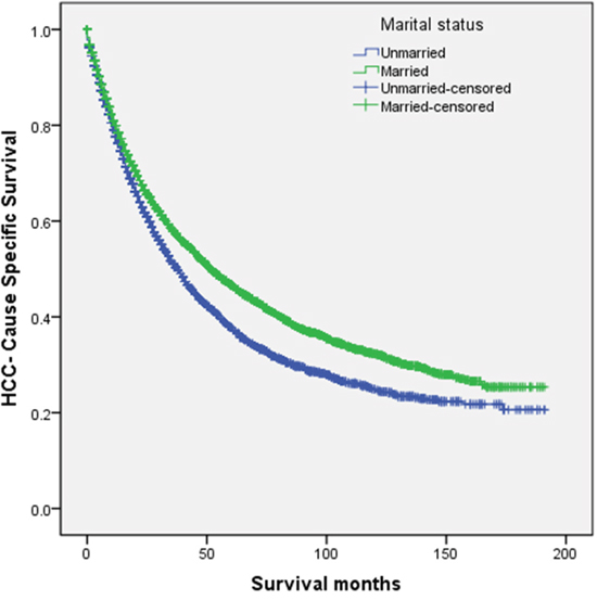 Survival curves in hepatocellular carcinoma patients treated with surgical resection between the unmarried patients and the married patients.
