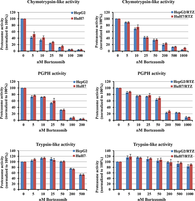 Bortezomib-induced inhibition of proteasome activities in parental and bortezomib-resistant HCC cells.