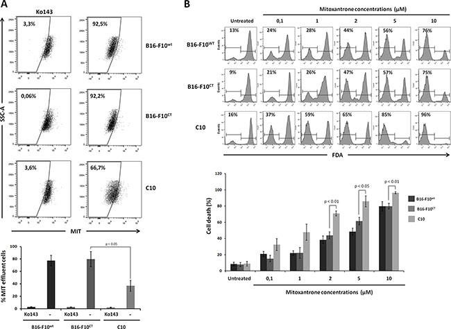 IGF-1 downregulation sensitizes B16-F10 cells to mitoxantrone.