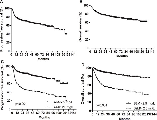 Progression-free survival and overall survival in the training cohort.