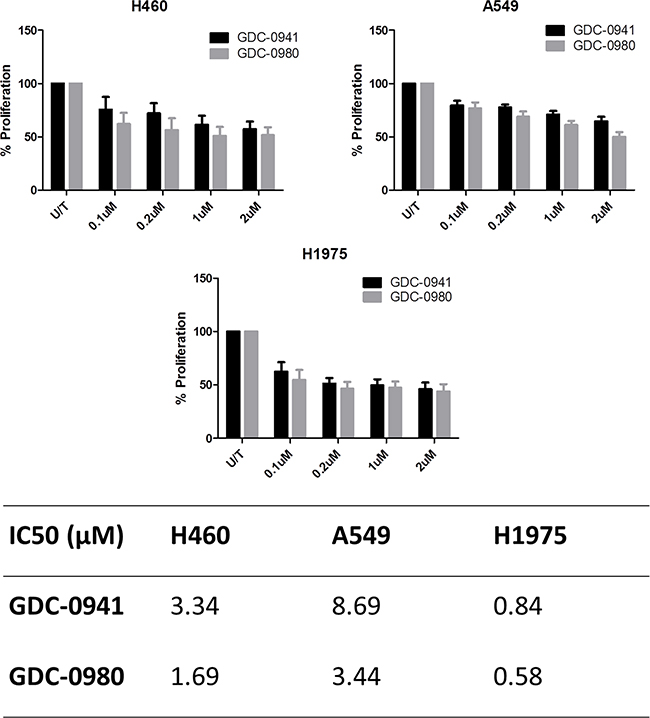 Comparison of the anti-proliferative effects of GDC-0941 and GDC-0980 in NSCLC cell lines.