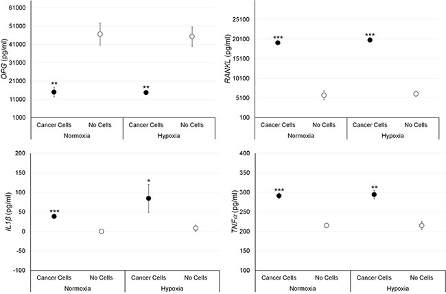 Protein releases (ELISA), expressed as total protein ratio (n = 3 replicates), in female bone fragments cultured with or without MCF-7 cancer cells, both in normoxic and hypoxic conditions.