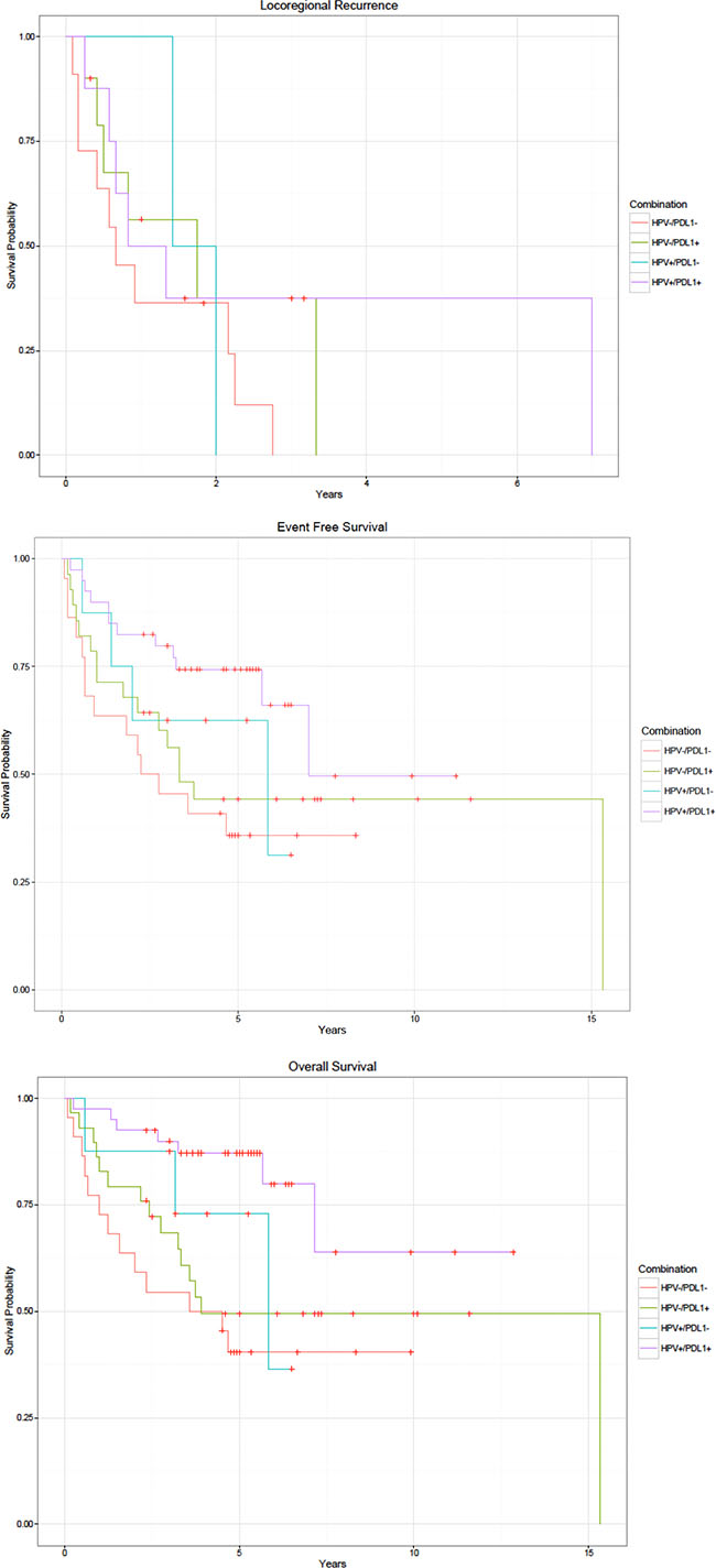 Kaplan-Meier curves by HPV and PD-L1 status.