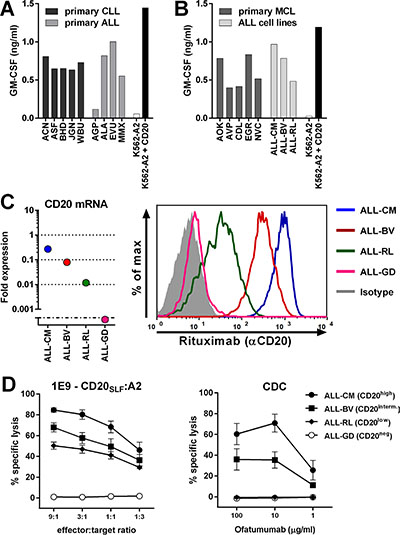 CD20-reactive T-cell clone 1E9 efficiently lyses CD20low B-cell malignancies unsusceptible to CD20-targeting antibodies.