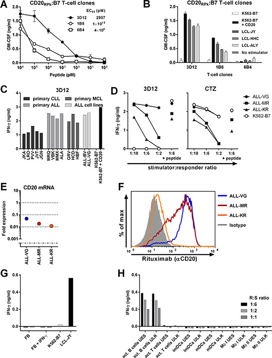 Identification of T-cell clone 3D12 recognizing CD20-derived peptide RPKSNIVLL in HLA-B7.