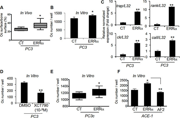 ERRα overexpression in PCa-ERRα cells modified bone-resorbing cells.