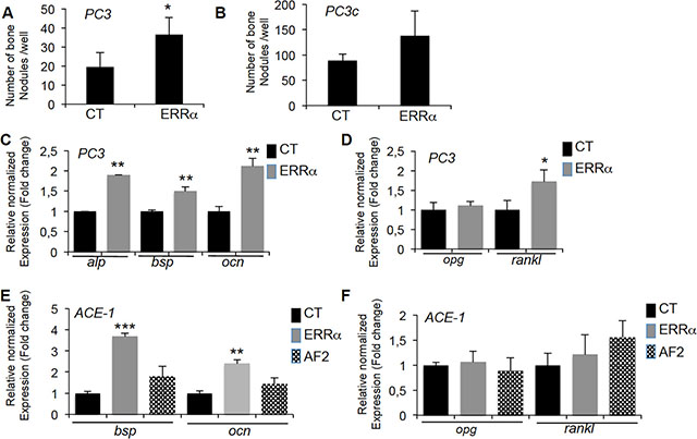 ERRα overexpression in PCa-ERRα cells stimulates bone-forming cells.