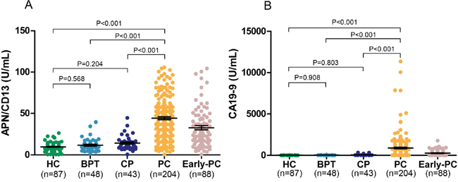 APN/CD13 and CA19-9 concentrations in serum of pancreatic cancer patients and in the control groups are shown.