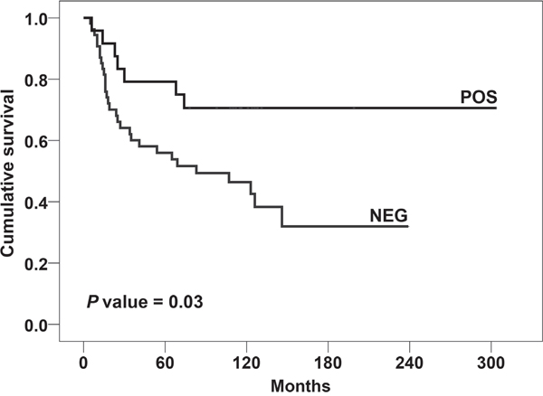 Prognostic impact of the presence of CD99 rs312257 T allele according to Kaplan–Meier curves and log-rank test.