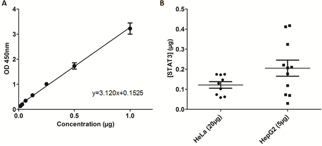 Recombinant STAT3 ELISA evaluation and quantification of nuclear STAT3 bound to DNA in cell extracts.