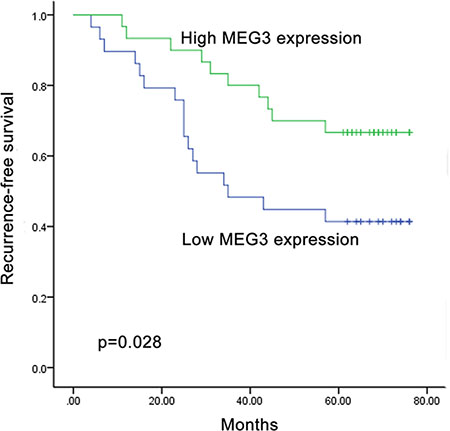 Recurrence prediction of MEG3 expression.