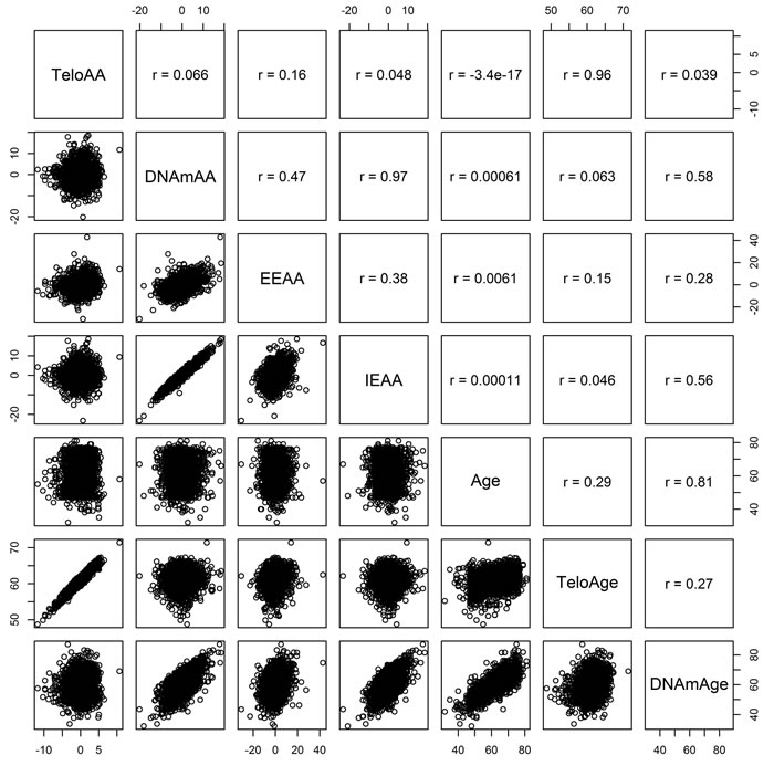 KORA Pearson correlations between telomere length based age acceleration (TeloAA), epigenetic age acceleration (DNAmAA), extrinsic epigenetic age acceleration (EEAA), intrinsic age acceleration (IEAA), chronological age (Age), telomere length estimated chronological age (TeloAge), and epigenetic age (DNAmAge).