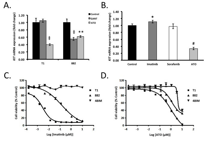 Pharmacologic modulation of Gli transcription factors decreases KIT expression and cell viability.