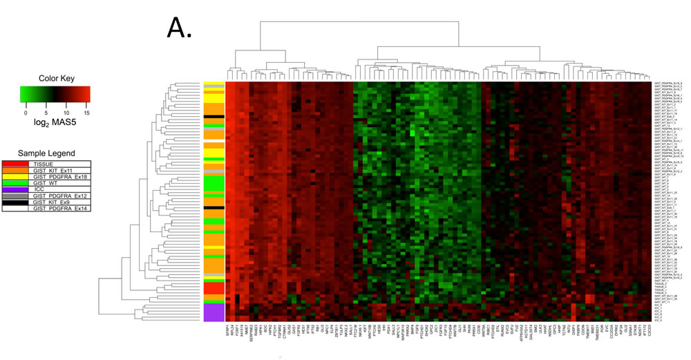 Hedgehog signaling-related genes are differentially expressed by human gastric GIST, purified human ICC and their source tissue by microarray analysis.