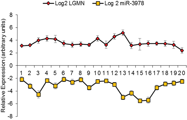 MiR-3978 and legumain levels are inversely correlated in gastric cancer patients with metastatic disease.