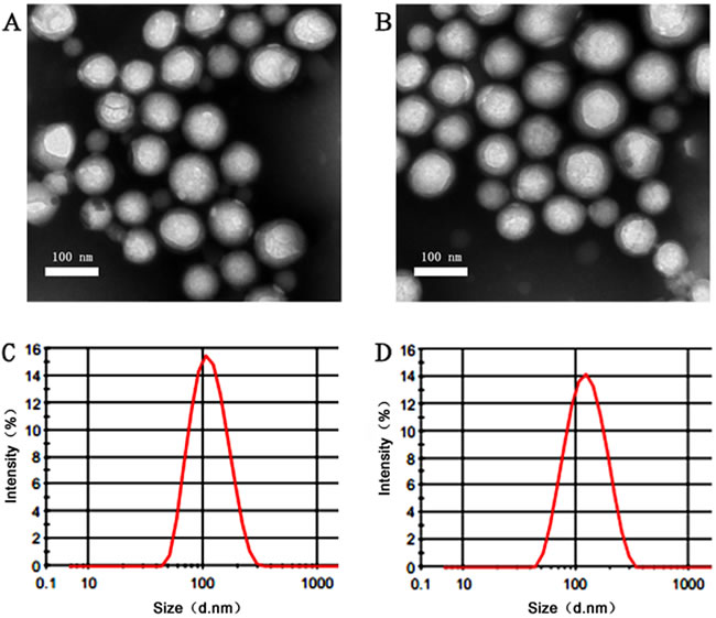 Characterastics of different nanoparticles.