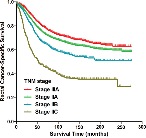 Kaplan-Meier curves of cancer-specific survival for patients with stage IIA, stage IIB, stage IIC and stage IIIA rectal cancer from the SEER database.