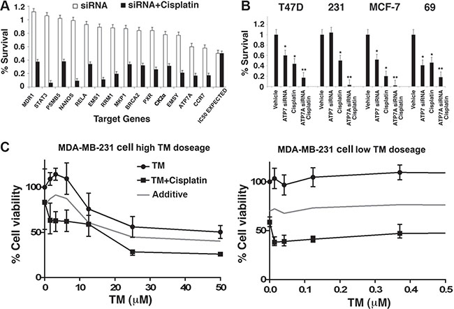Identification and validation of a target pathway that affects cisplatin response in human breast cancer.