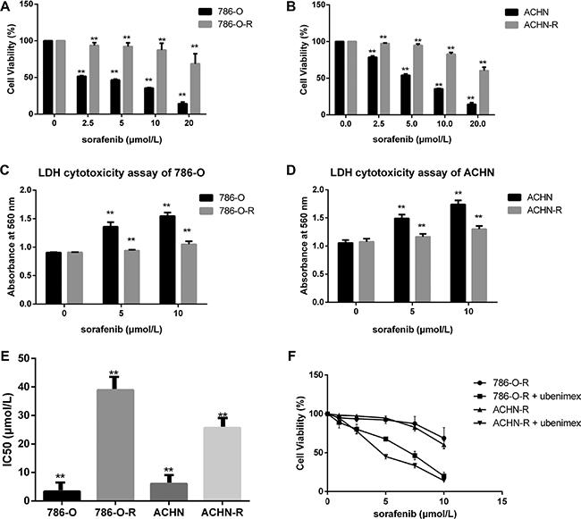Sorafenib resistant cells show lower susceptibility.