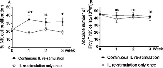 Continuous in vivo interleukin re-stimulation is not necessary for NK cells to produce increased amount of IFNγ.