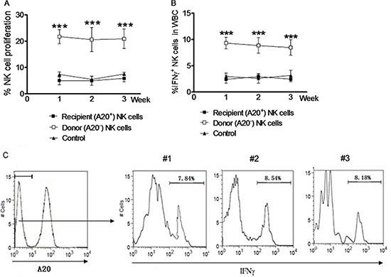 NK cells induced by in vivo IL pre-activation and re-stimulation remain the enhanced capacity to produce IFNγ after syngeneic adoptive infusion.