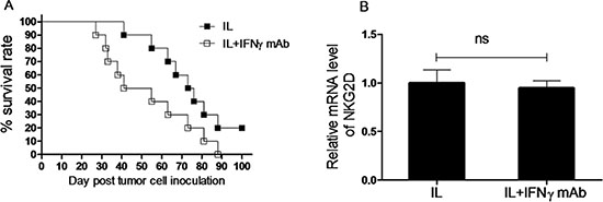IFNγ production plays an important role in anti-leukemia activity of NK cells induced by in vivo IL pre-activation and re-stimulation.
