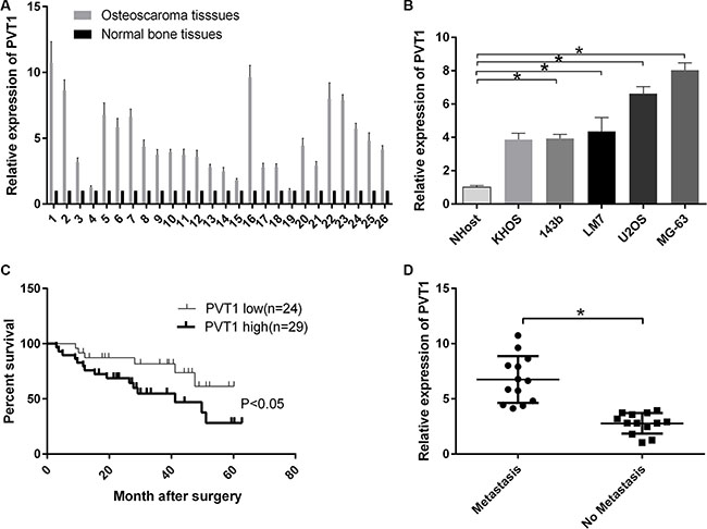 LncRNA PVT1 is overexpressed in osteosarcoma and decreases the survival rate of osteosarcoma patients.