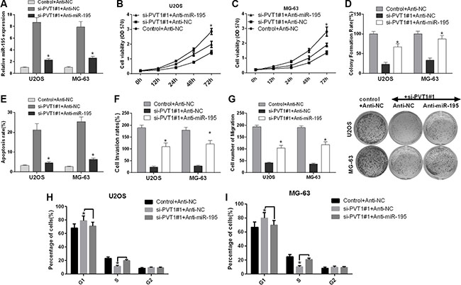 Silencing PVT1 by siRNA suppresses proliferation, migration and invasion and promotes cell cycle arrest and apoptosis via miR-195 in osteosarcoma cells.