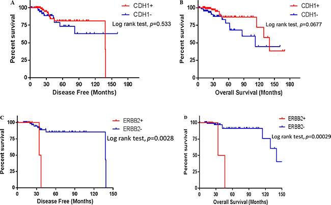 Survival of the ILC patients in different states of CDH1 and ERBB2 gene mutation states.